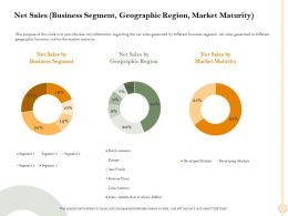 Net Sales Business Segment Geographic Region Market Maturity Asia Ppt Powerpoint Presentation Ideas