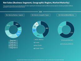 Net Sales Business Segment Geographic Region Market Maturity Ppt Powerpoint Presentation Diagrams