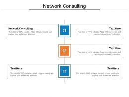 Network Consulting Ppt Powerpoint Presentation Pictures Example Cpb