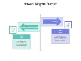 Network Diagram Example Ppt Powerpoint Presentation Infographic Template Professional Cpb