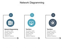 Network Diagramming Ppt Powerpoint Presentation Styles Model Cpb