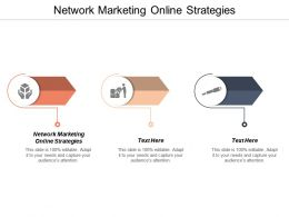 Network Marketing Online Strategies Ppt Powerpoint Presentation Professional Sample Cpb