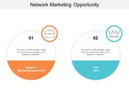 Network Marketing Opportunity Ppt Powerpoint Presentation Ideas Graphic Tips Cpb