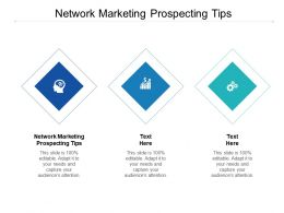 Network Marketing Prospecting Tips Ppt Powerpoint Presentation Portfolio Example Cpb
