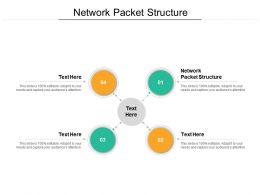 Network Packet Structure Ppt Powerpoint Presentation Model Format Cpb
