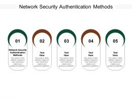 Network Security Authentication Methods Ppt Powerpoint Presentation Styles Brochure Cpb