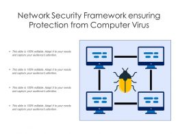 Network Security Framework Ensuring Protection From Computer Virus