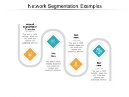 Network Segmentation Examples Ppt Powerpoint Presentation Gallery Slide Download Cpb