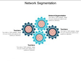 Network Segmentation Ppt Powerpoint Presentation Icon Pictures Cpb