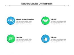 Network Service Orchestration Ppt Powerpoint Presentation Summary Samples Cpb