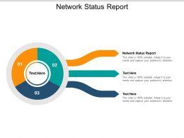 Network Status Report Ppt Powerpoint Presentation Infographics Microsoft Cpb