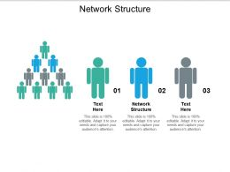 Network Structure Ppt Powerpoint Presentation Slides Example Introduction Cpb