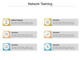 Network Teaming Ppt Powerpoint Presentation Ideas Graphic Images Cpb