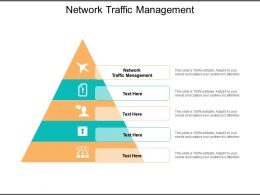 Network Traffic Management Ppt Powerpoint Presentation Outline Graphic Images Cpb