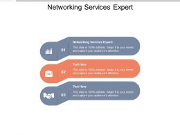 Networking Services Expert Ppt Powerpoint Presentation Inspiration Themes Cpb