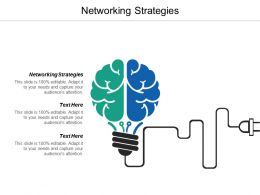 Networking Strategies Ppt Powerpoint Presentation Model Example File Cpb