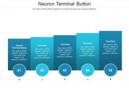 Neuron Terminal Button Ppt Powerpoint Presentation Infographic Template Diagrams Cpb