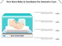 New Born Baby In Incubator For Intensive Care