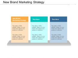 New Brand Marketing Strategy Ppt Powerpoint Presentation Layouts Guidelines Cpb