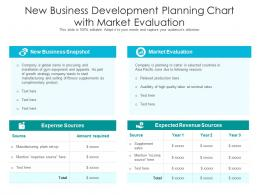 New Business Development Planning Chart With Market Evaluation