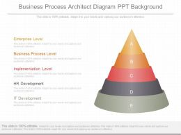 New Business Process Architect Diagram Ppt Background