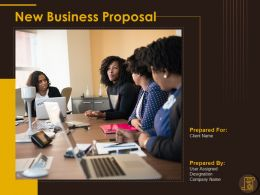 New Business Proposal Powerpoint Presentation Slides