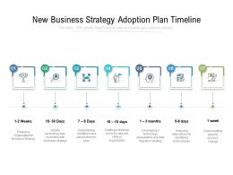 New Business Strategy Adoption Plan Timeline