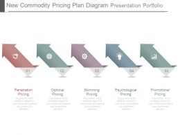 New Commodity Pricing Plan Diagram Presentation Portfolio