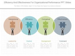 New Efficiency And Effectiveness For Organizational Performance Ppt Slides