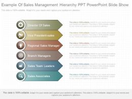 New Example Of Sales Management Hierarchy Ppt Powerpoint Slide Show