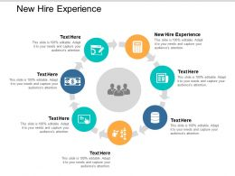 New Hire Experience Ppt Powerpoint Presentation File Topics Cpb