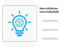New Initiatives Icon Inside Bulb