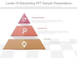 New Levels Of Rebranding Ppt Sample Presentations