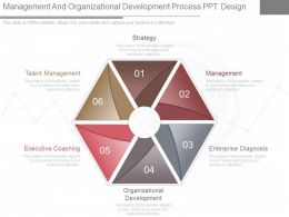 New Management And Organizational Development Process Ppt Design