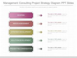 New Management Consulting Project Strategy Diagram Ppt Slides