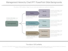 New Management Hierarchy Chart Ppt Powerpoint Slide Backgrounds