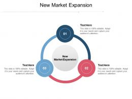 New Market Expansion Ppt Powerpoint Presentation Styles Deck Cpb