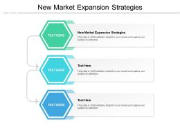 New Market Expansion Strategies Ppt Powerpoint Presentation Styles Display Cpb
