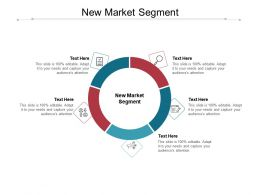 New Market Segment Ppt Powerpoint Presentation Styles Topics Cpb