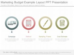 New Marketing Budget Example Layout Ppt Presentation