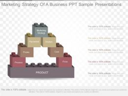 New Marketing Strategy Of A Business Ppt Sample Presentations
