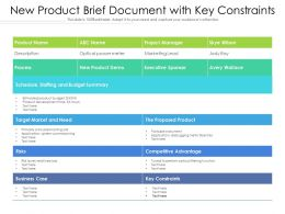 New Product Brief Document With Key Constraints