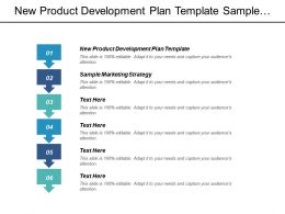 New Product Development Plan Template Sample Marketing Strategy Cpb