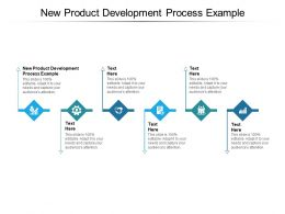 New Product Development Process Example Ppt Powerpoint Presentation Show Cpb