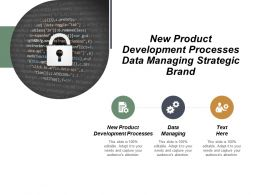 New Product Development Processes Data Managing Strategic Brand Cpb