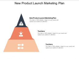 New Product Launch Marketing Plan Ppt Powerpoint Presentation Gallery Example Cpb