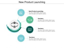 New Product Launching Ppt Powerpoint Presentation Ideas Templates Cpb