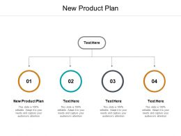 New Product Plan Ppt Powerpoint Presentation Show Files Cpb