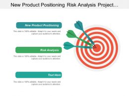 New Product Positioning Risk Analysis Project Development Management Cpb