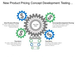 New Product Pricing Concept Development Testing Business Analysis